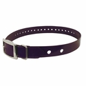"buy discount  Hi-Flex 1"" 2-Hole Violet Replacement Collar Strap"
