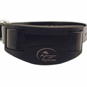 buy discount  SportDOG SD-1225 Collar Detail