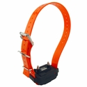 buy discount  2300/2NCP & 3500/2NCP Replacement RX with Orange Strap