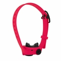 buy discount  Dogtra iQ No-Bark Pink Collar
