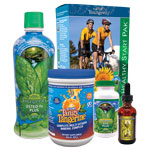 Youngevity - Healthy Start Weight Loss Pak - Original
