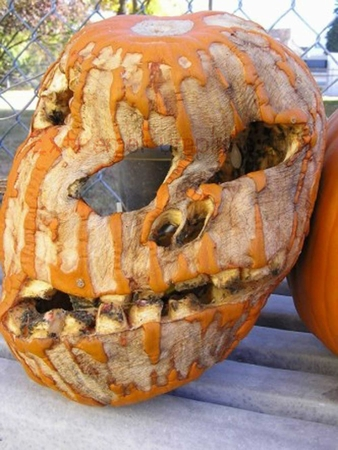 Droopy, Dried-Up Skull Pumpkin