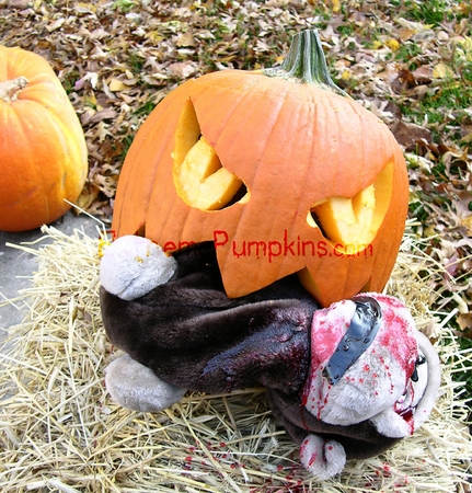 Road Kill Pumpkin