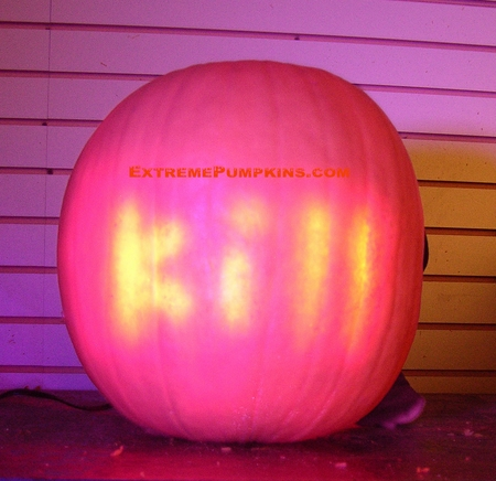 My First Subliminal Pumpkin Was A Little Too Scary