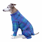 Italian Greyhound Turquoise Square Plaid Indoor/Outdoor Bodysuit