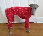 Italian Greyhound Red Snowflake Indoor/Outdoor Bodysuit