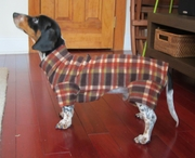 Dachshund Brown Plaid Indoor/Outdoor Bodysuit