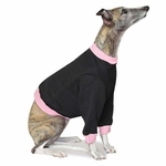 Whippet Black w/Pink Cuffs Heavyweight Sweatshirt