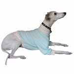 Whippet Mint Cable Fleece Sweater