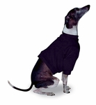 Italian Greyhound Black Sweatshirts