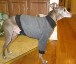 Italian Greyhound Smoke Tweed Fleece Sweater
