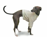 Italian Greyhound Vanilla Sprinkle Nantucket Fleeced Sweater
