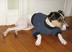 Italian Greyhound Denim Fleece Sweater