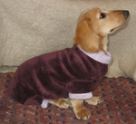 Dachshund Plum Windblock Fleece Bodysuit