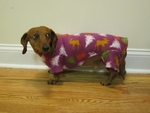 Dachshund Plum Holiday Trees Indoor/Outdoor Bodysuit