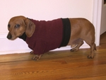 Dachshund Beet Heavy Fleece Sweater