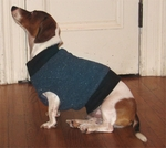 Dachshund Fleeced Denim Sweater