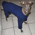 Italian Greyhound Sapphire Fleece Outdoor Bodysuit