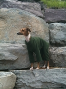 Italian Greyhound Forest Fleece Bodysuit
