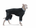Italian Greyhound Black Fleece Windblock Bodysuit
