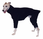 Whippet Black Fleece Bodysuit