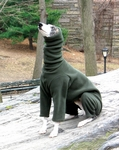 Whippet  Forest Fleece Hooded Bodysuit