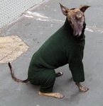 Whippet Hunter Fleece Bodysuit