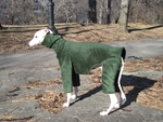 Whippet Windblock Fleece Bodysuit - Hunter