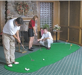 Big Moss General Artificial  Indoor Putting Green
