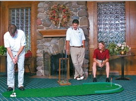 Big Moss Indoor Putting Green 3' X 9'