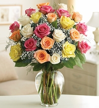 Valentine Two Dozen Premium Long Stem Assorted Roses