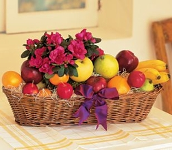 Plant and Fruit Gift Basket