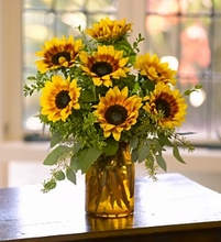 Sunrise Sunflowers