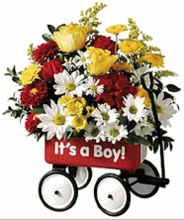 Baby's First Wagon Bouquet (Boy or Girl)