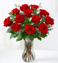 One Dozen Brilliant Red Roses