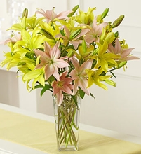 Pink & Yellow Lily Bouquet