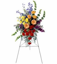 Sympathy the colorful arrangement an easel