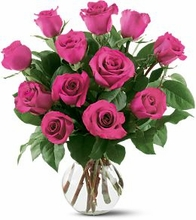 12 Hot Pink Roses