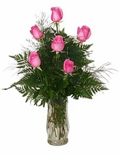 Half Dozen Pink Roses Arranged