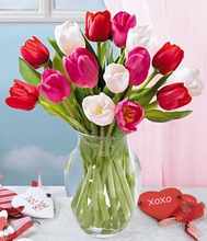Sweetheart Tulips