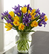 Tulip and Purple Iris Bouquet