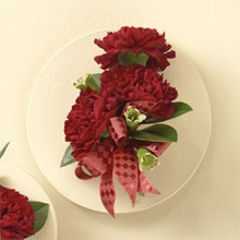 Red Carnations Corsage