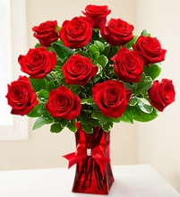 One Dozen Red rose Valentine