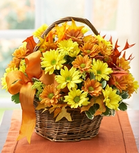 Fall Daisy Basket