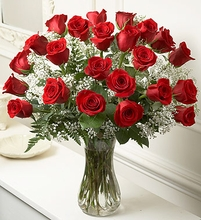 Long Stem Red Roses, 24 Stems