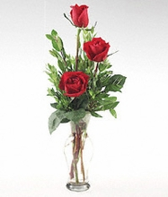 A glass vase of three Red roses