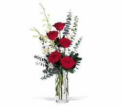 Red Roses and White Orchids