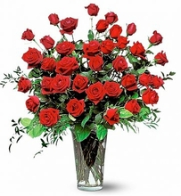 Three-Dozen-Red-Rose-Bouquet Happy Birthday