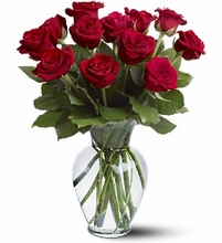 H.B.Day 12 Red Roses