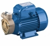 Pedrollo PQA Series Peripheral Lateral  Suction Turbine Pumps